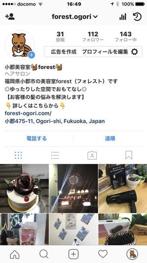 S__33193987.jpg