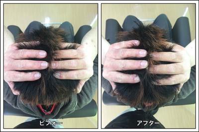 S__37773315.jpg